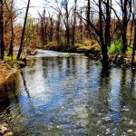 Ramapo River Watershed Conference kicks off Friday at Ramapo College