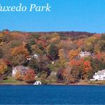 Houses by the dozen — even Tuxedo Park gets the housing blues