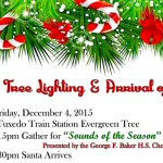 Tree lighting and other area holiday celebrations